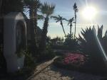 Gardens of Poseidon Spa Ischia Italy