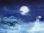 Moon full night