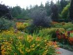Rosemoor hot garden