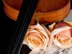 *roses and music*