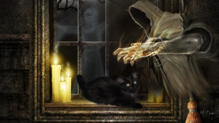 Ghost Black Cat Halloween By Madonna Fantasy Abstract Background Wallpapers On Desktop Nexus Image 2028404