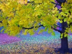 Colorful Patk