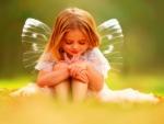 *little butterfly *