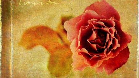 *painting* - words, rose, frame, panting
