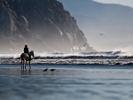 riding a horse on the beach