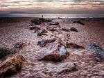 rocks on the beach at dusk hdr