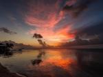 Sublime Ocean Sunset