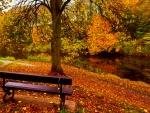Autumn rest