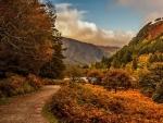 Lower Glendalough, County Wicklow, Ireland