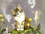 Kitten and Fairies