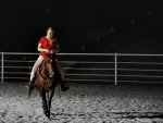 Lonely Rodeo