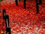 Red Fallen Road