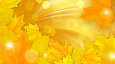 Leaves of Gold - fall, autumn, maple, sunlight, yellow, sunny, leaves, bokeh, gold, Firefox Persona theme