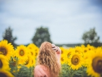 A Girl among Sunflowers