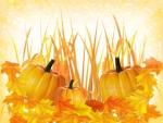 Autumn Season ~