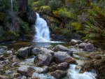 Lady Bath Falls, Victoria, Australia