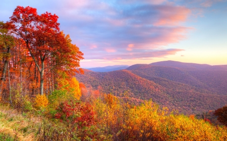 Autumn in Virginia - hills, leaves, colors, trees, sky, landscape