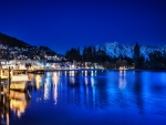 lakeside town on a blue night