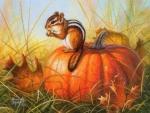 Squirrel of Autumn