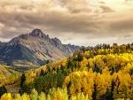 Autumn at Mount Sneffel