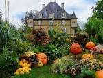 Home garden fall decor