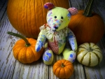 Teddy Bear & Pumpkins