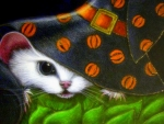 Witch White Mice