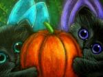 Pumpkin of Fairy Kittens