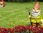 *The singer gardener*