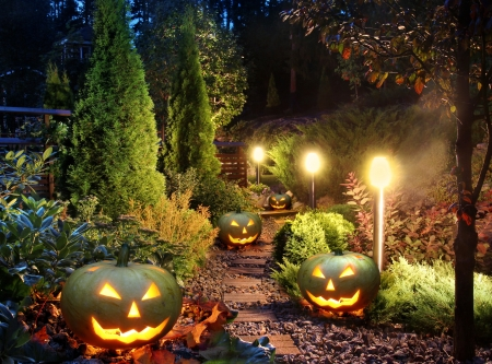 Halloween decoration - garden, decoration, lights, pumpkins
