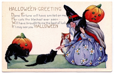 Halloween Greeting - witch, owl, pumpkin, cats, artwork