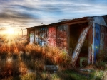 abandoned tin shack at sunrise hdr