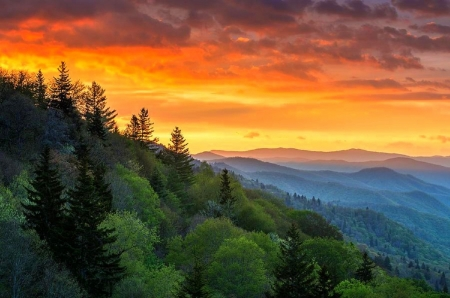 Great Smoky Mountains Mountains Amp Nature Background