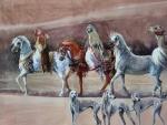 Arabian Horses F