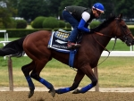 American Pharoah Working Out