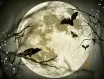 Halloween Moon F