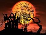 Midnight Halloween F1