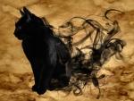 Halloween Black Cat F