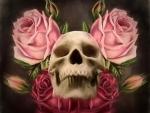 ~Skull & Roses~