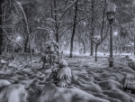 winter in a park in kiev at night hdr