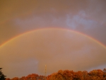WV Rainbow