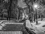 park steps on a winter night hdr