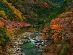 Autumn Train Trip
