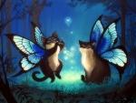 Cat Fairies