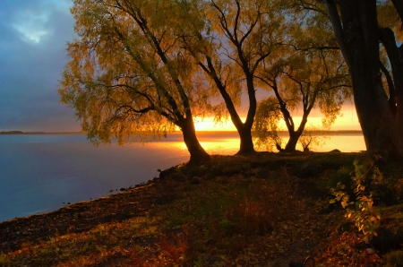 Autumn sunset - fall, riverbank, autumn, beautiful, sunset, trees, serenity, mirror, river, reflection