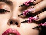 Artistic Nail Art
