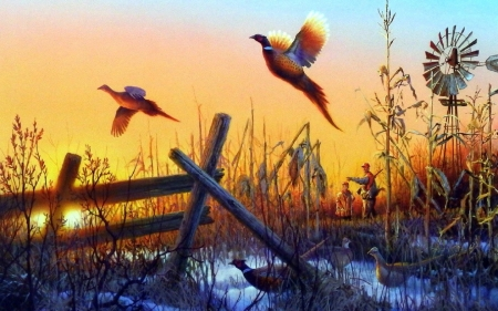 Hunting Season S End Birds Animals Background Wallpapers