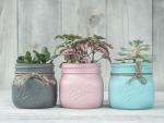 *Painted Mason jars*