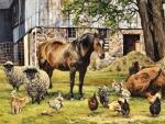 Barnyard Animals f