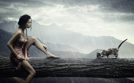 Sensation - girl, mountains, raining, rain, cat, woman, log